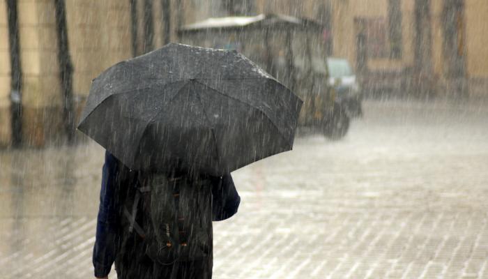 Hansaton: Person im Regen mit Regenschirm, von hinten