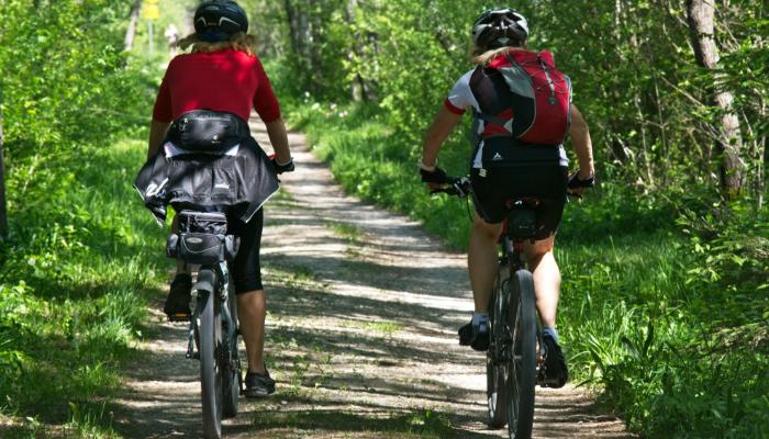 Hansaton: Zwei Radfahrer auf einem Waldweg